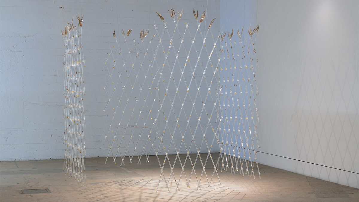 """Jenny Yurshansky, """"We Are All Guests Here,"""" 2021. Lamp worked glass, silver fuming, polyolefin, PVC vinyl, and shadows. Image courtesy of the artist and Bridge Projects. Photo: Robert Wedemeyer."""